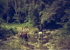 Foto 12 niños Sagua de Tanamo camino de la escuala Juan M sanchez
